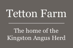 Welcome to Tetton Farm