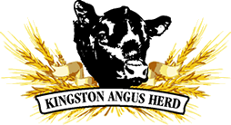 Tetton Farm Logo